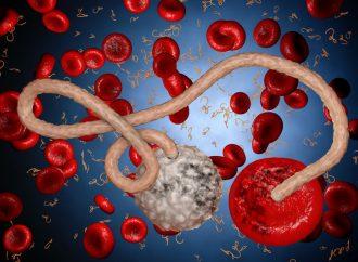 El virus que ataca el cáncer